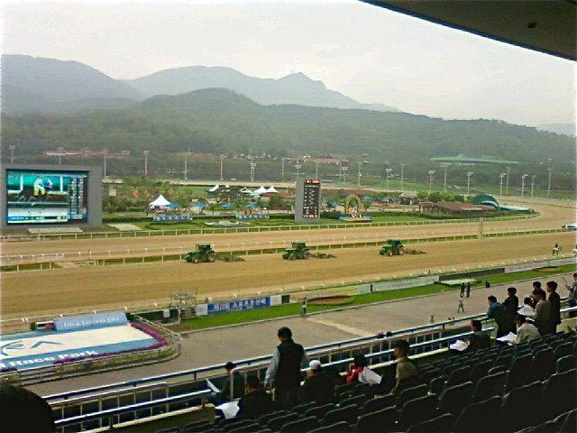 Seoul Races