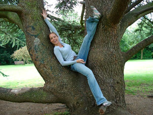 Tree in Bath, England