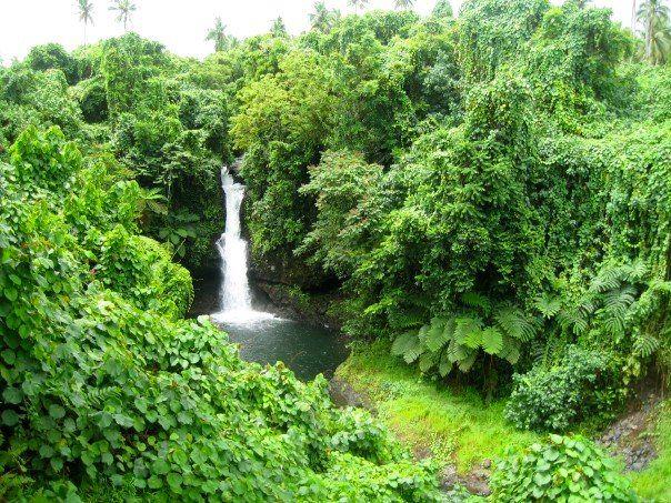 Samoan Waterfall