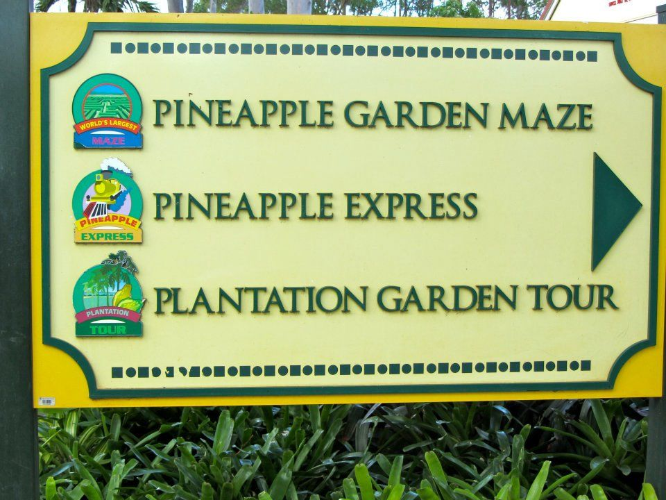 Spoiled for choice at the Dole Plantation