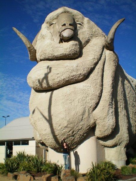 Big Merino Australia
