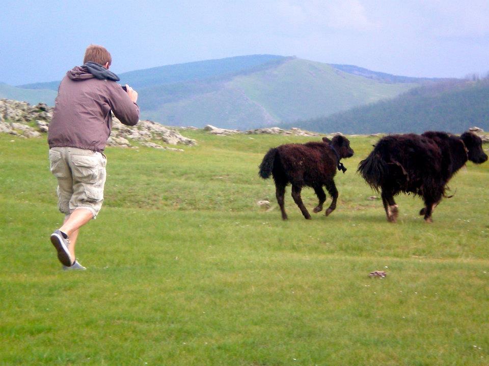 Niek chasing down the Yaks in Mongolia