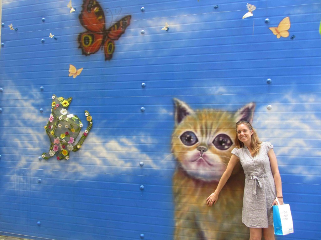 Cat wall in Busan, Korea