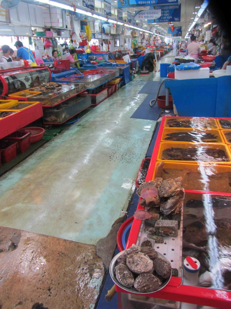 Inside the fish market in Busan, Korea