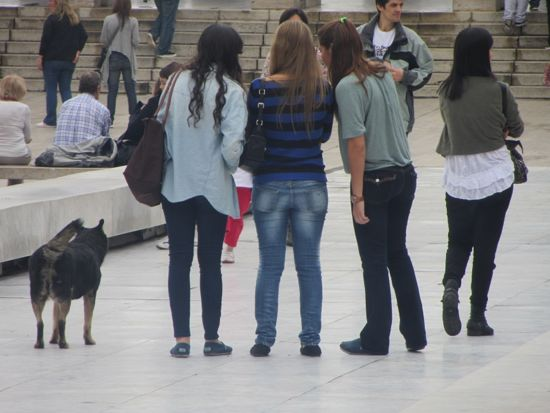 Dog and tourists in Rosario