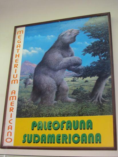 Prehistoric animal, Tarija, Bolivia