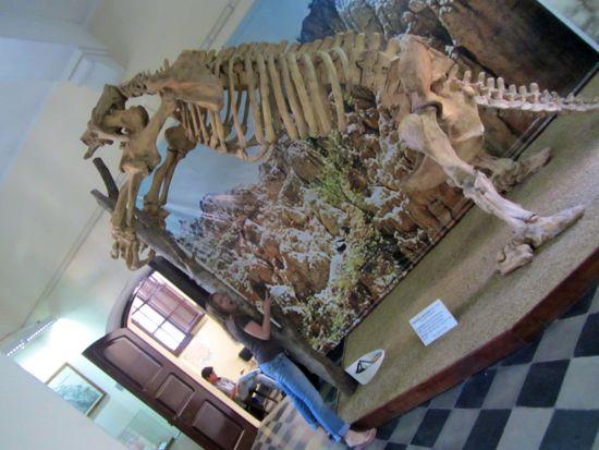 Breaking bones in Tarija, Bolivia