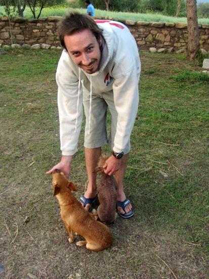 Dogs at EDYFU, Bolivia