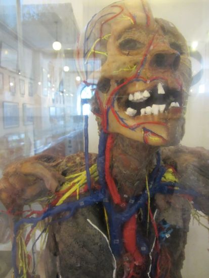 Anatomy Museum in Sucre, Bolivia