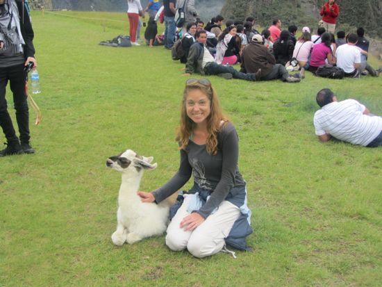 Baby llama at Machu Picchuu