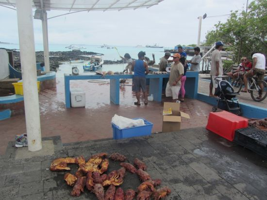Fishermen in the Galapagos