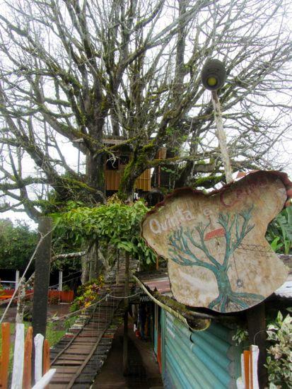 Treehouse Galapagos