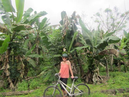 Bike Galapagos