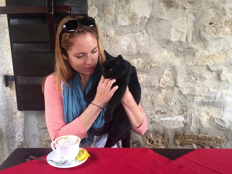 Cat in Hum