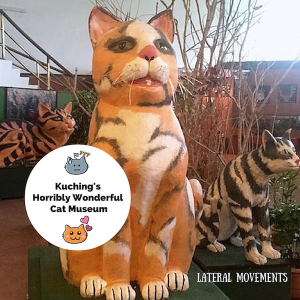 Cat Museum featured image