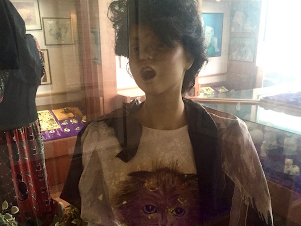 Cat museum model