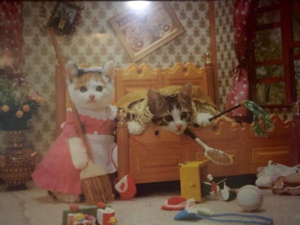 Perlorian cats