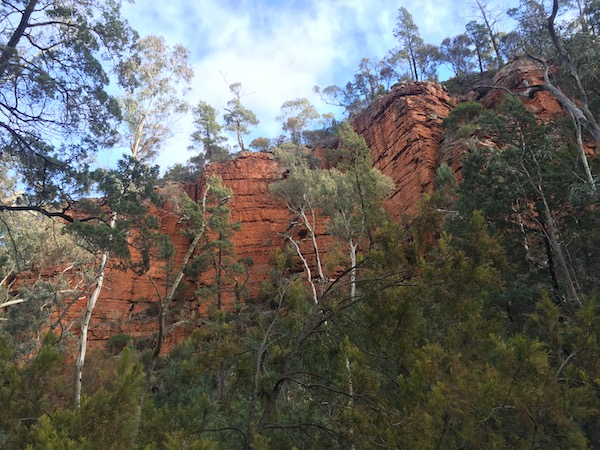 Gorge Melrose South Australia