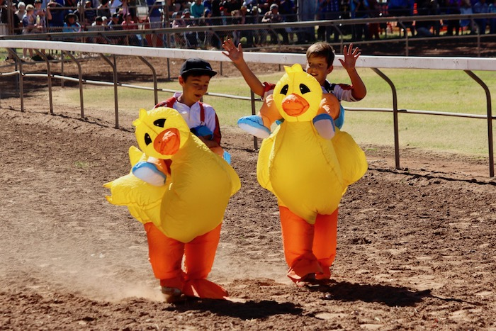 Boys in duck suits