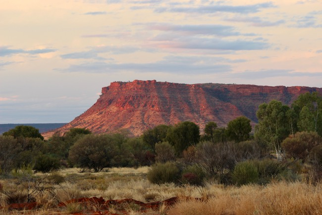 Kings Canyon from Resort