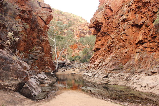 gorge macdonnell ranges