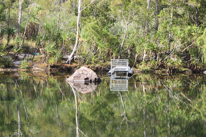 Crocodile cage Kakadu