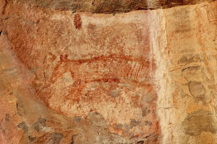 Rock art painting of a Tasmanian Tiger
