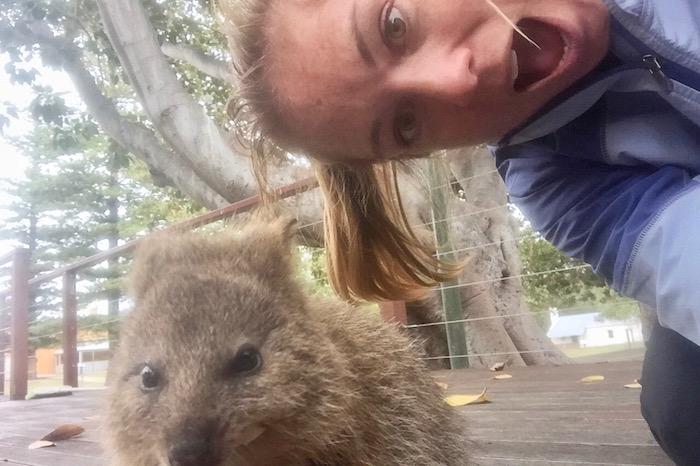 selfie with quokka