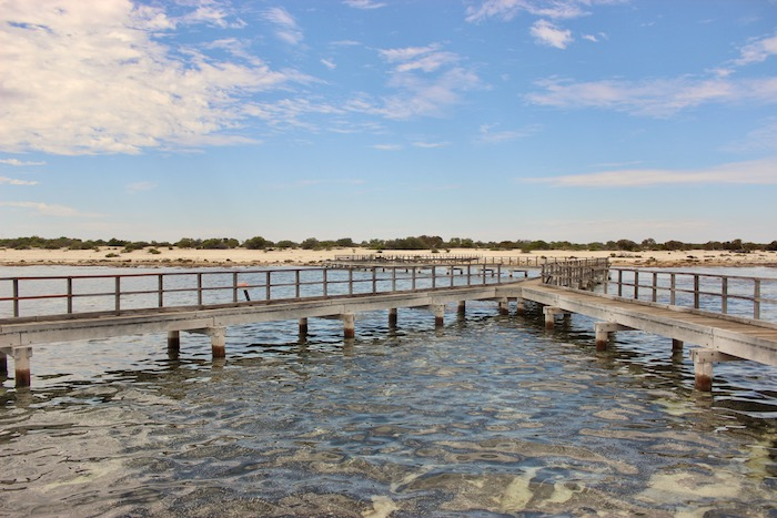 Stromatolite walkway