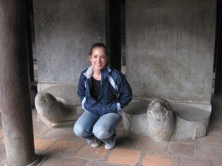 Hanoi stone turtles